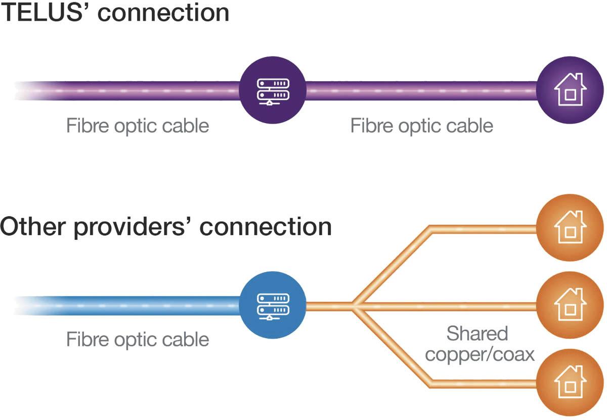 TELUS Connection Graph